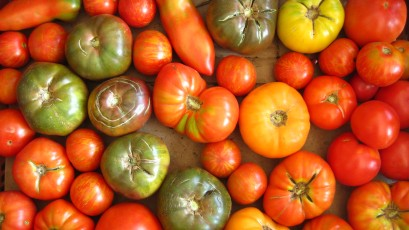 Heirloom tomatoes!