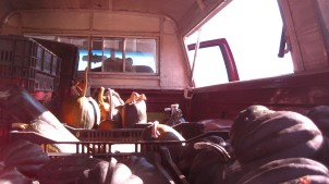 Back of the truck loaded up with winter squash