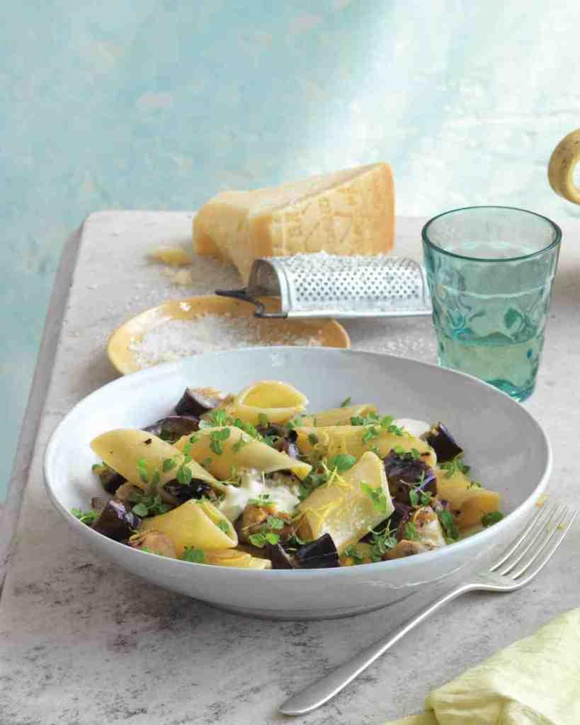 pennoni-eggplant-0811mld107466_vert