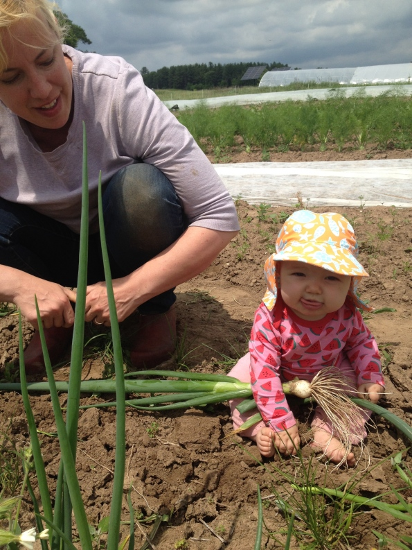 Maybelle and Mom harvesting onions