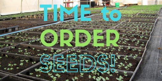 time-to-order-seeds